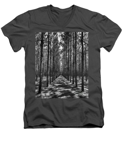 Rows Of Pines Vertical Men's V-Neck T-Shirt