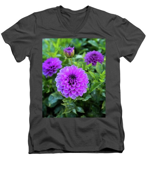 Royal Dahlia Delight Men's V-Neck T-Shirt