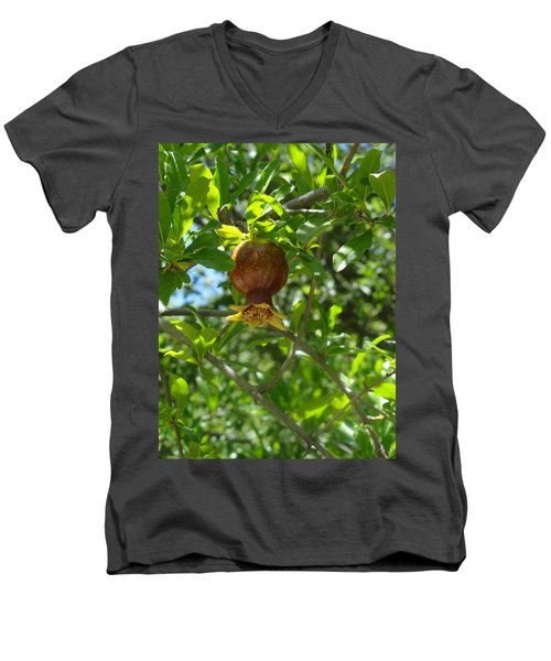 Royal Onion Pomegranate Men's V-Neck T-Shirt