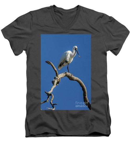 Royal Spoonbill 01 Men's V-Neck T-Shirt