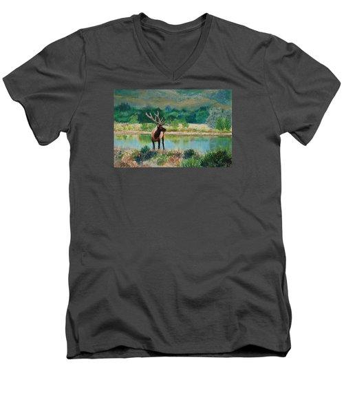Royal Velvet Men's V-Neck T-Shirt
