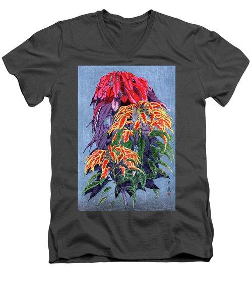 Roys Collection 6 Men's V-Neck T-Shirt
