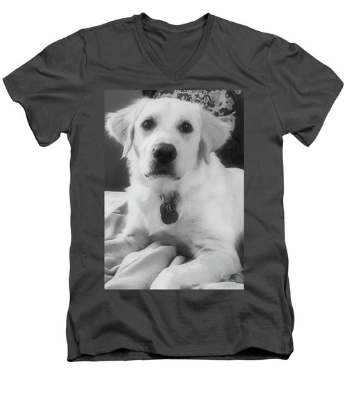 Men's V-Neck T-Shirt featuring the photograph Ruby by Bruce Carpenter