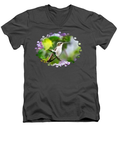Ruby-throated Hummingbird-1 Men's V-Neck T-Shirt by Christina Rollo