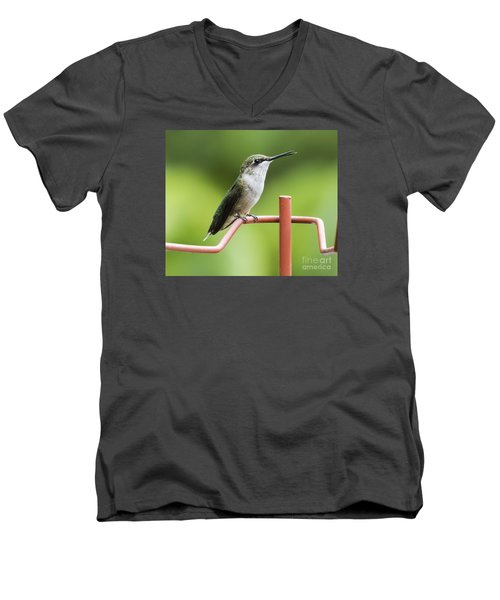 Men's V-Neck T-Shirt featuring the photograph Ruby-throated Hummingbird by Ricky L Jones