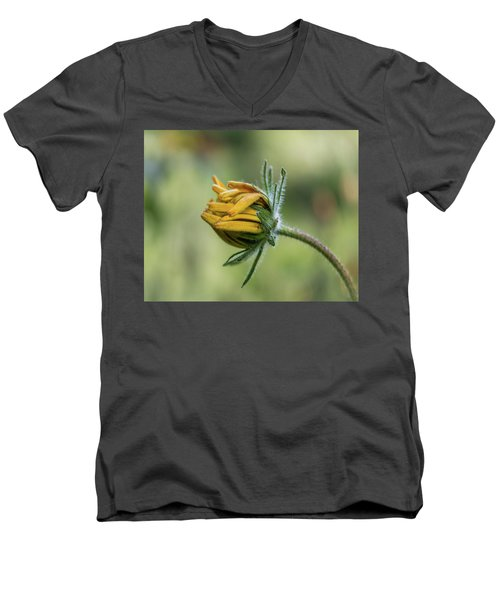 Rudbeckia Fuzzy Bud Men's V-Neck T-Shirt