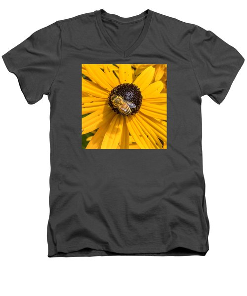 Rudbeckia With Bee Men's V-Neck T-Shirt