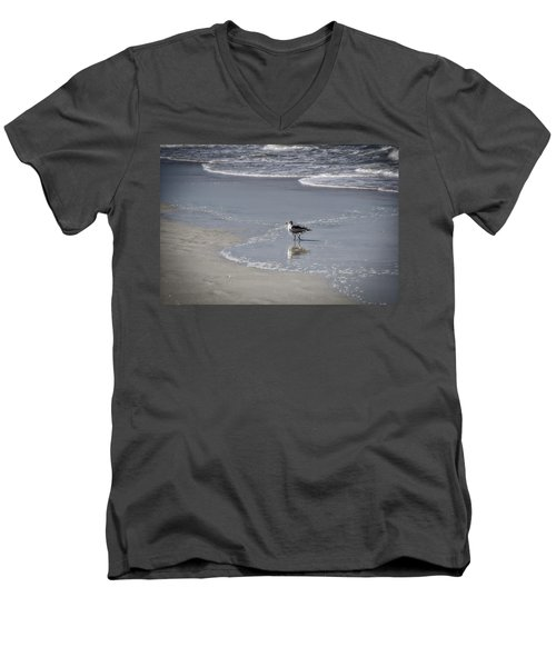 Ruffled Feathers Men's V-Neck T-Shirt