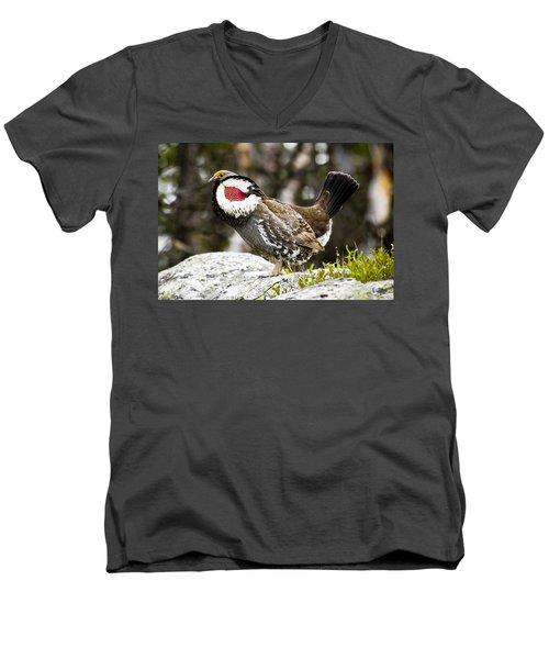 Ruffled Grouse II Men's V-Neck T-Shirt