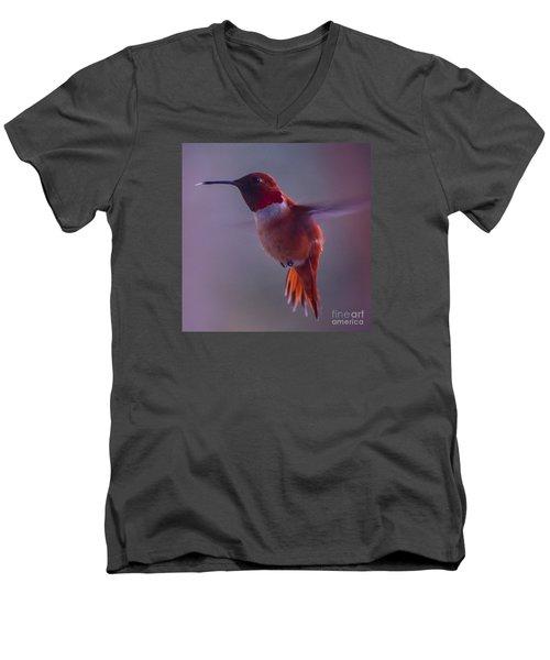 Rufus Hummingbird Men's V-Neck T-Shirt