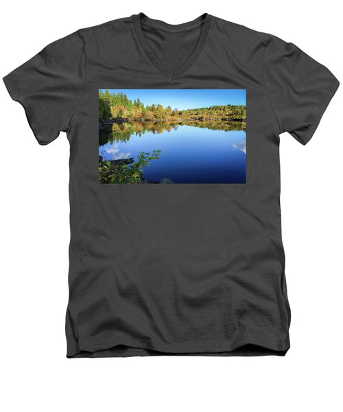 Ruminating The Fall Men's V-Neck T-Shirt
