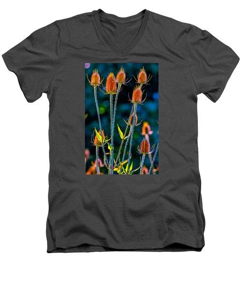 Rustic Weeds 2 Men's V-Neck T-Shirt