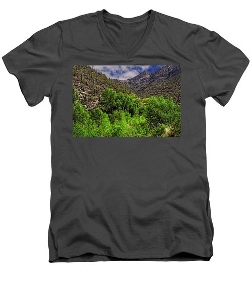 Men's V-Neck T-Shirt featuring the photograph Sabino Canyon H33 by Mark Myhaver