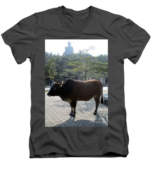 Men's V-Neck T-Shirt featuring the photograph Sacred Cow 3 by Randall Weidner