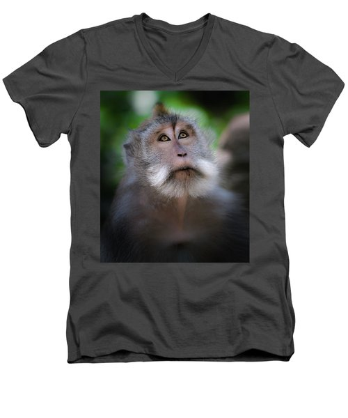 Sacred Monkey Forest Sanctuary Men's V-Neck T-Shirt