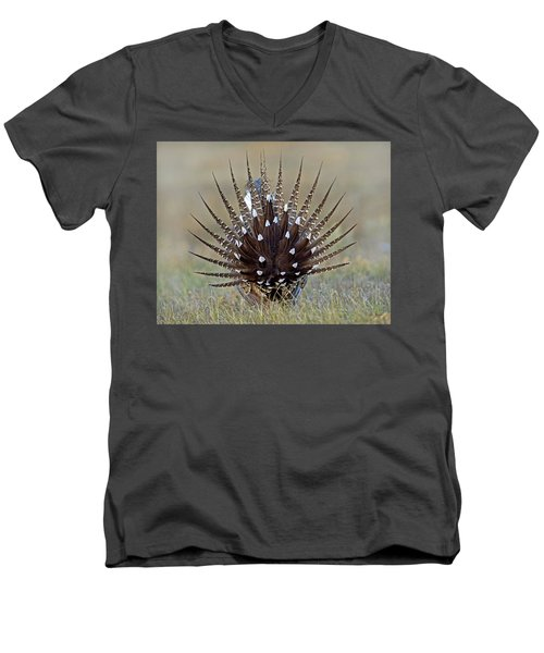Sage-grouse Tail Fan Men's V-Neck T-Shirt