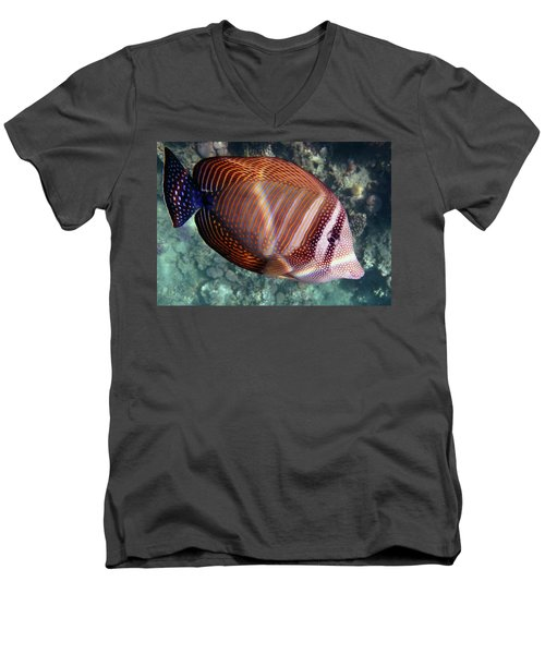 Sailfin Tang Makadi Bay Men's V-Neck T-Shirt