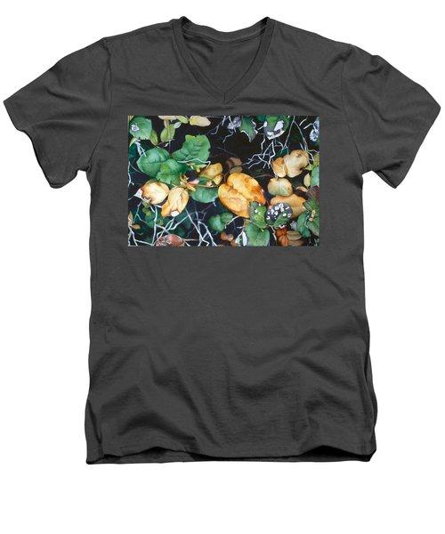 Salal Men's V-Neck T-Shirt