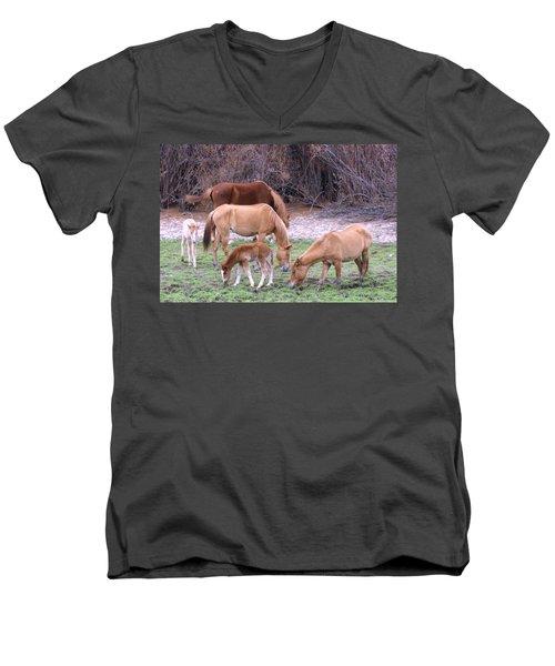 Salt River Wild Horses In Winter Men's V-Neck T-Shirt