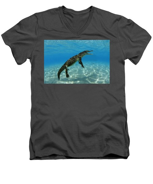Saltwater Crocodile Men's V-Neck T-Shirt by Franco Banfi and Photo Researchers