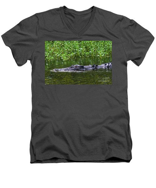 Saltwater Crocodile In Kakadu Men's V-Neck T-Shirt