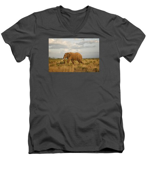 Men's V-Neck T-Shirt featuring the photograph Samburu Giant by Gary Hall