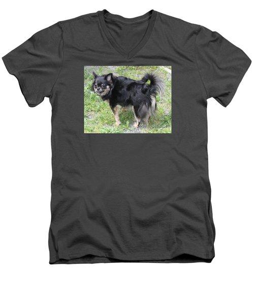 Sammie Jo 2 Men's V-Neck T-Shirt