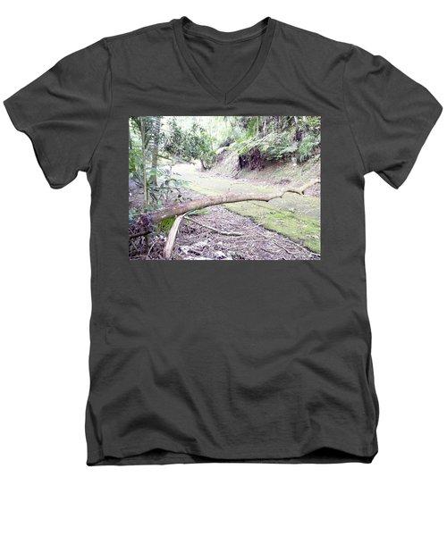 San Andres Echologycal Path At Guilarte's Forest Men's V-Neck T-Shirt