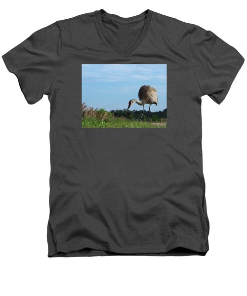 Sandhill Crane 018 Men's V-Neck T-Shirt