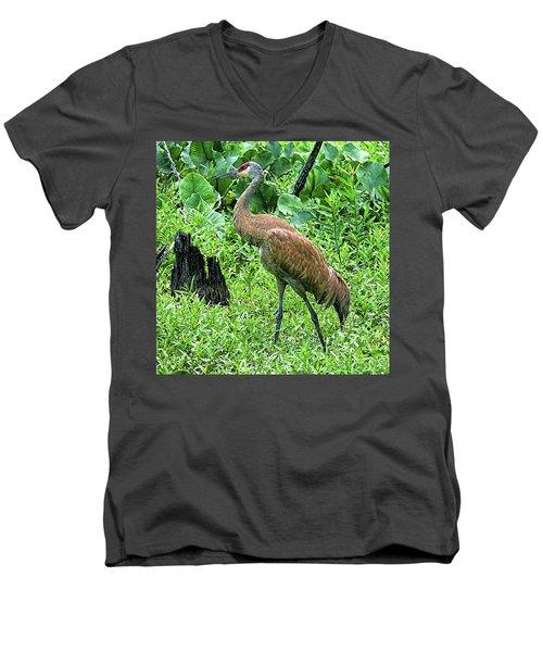Sandhill Crane At Sandy Ridge Reservation Men's V-Neck T-Shirt