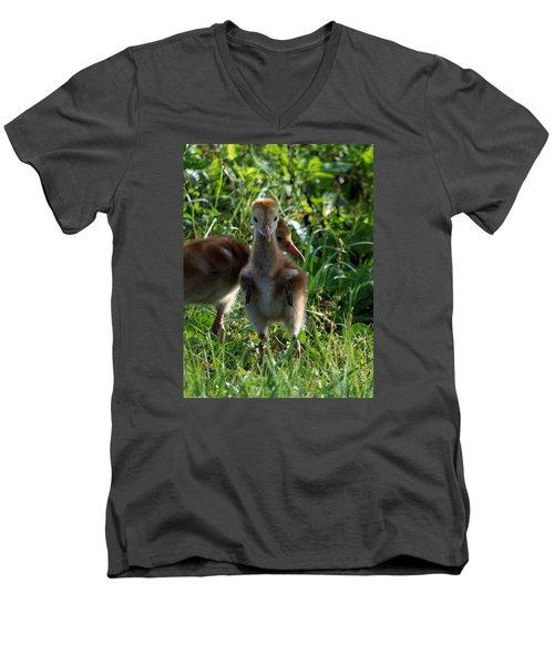 Sandhill Crane Chick 086  Men's V-Neck T-Shirt by Chris Mercer