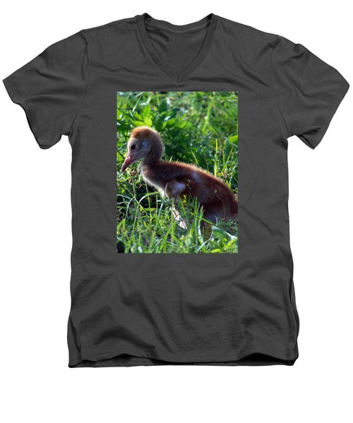 Sandhill Crane Chick 087  Men's V-Neck T-Shirt by Chris Mercer