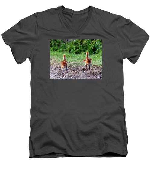Sandhill Crane Chicks 000 Men's V-Neck T-Shirt