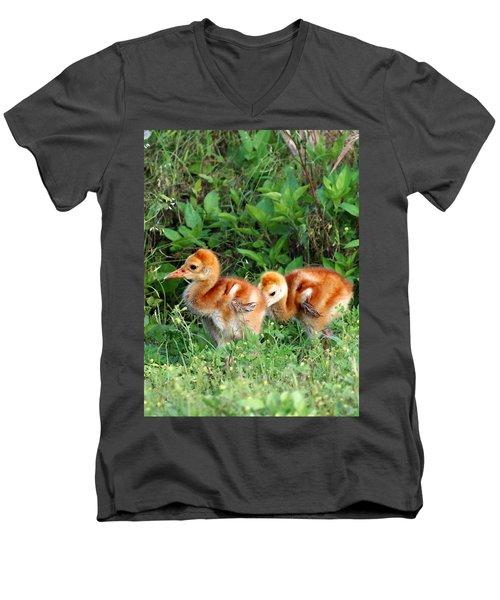 Sandhill Crane Chicks 002 Men's V-Neck T-Shirt by Chris Mercer