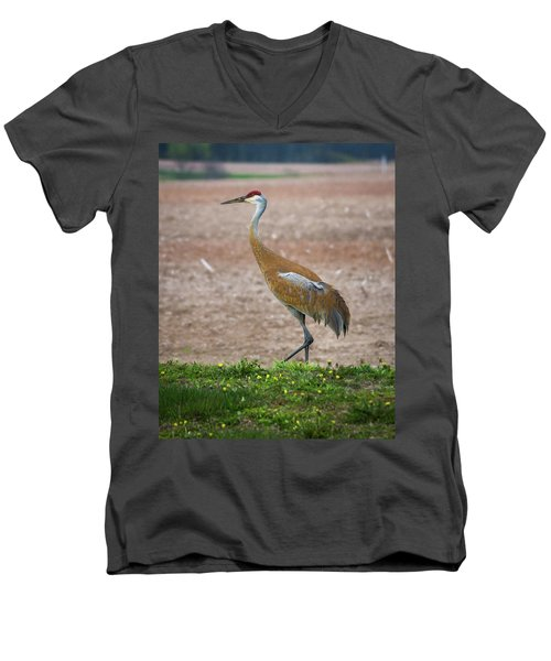 Men's V-Neck T-Shirt featuring the photograph Sandhill Crane In Profile by Bill Pevlor