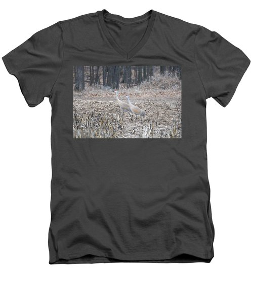 Men's V-Neck T-Shirt featuring the photograph Sandhill Cranes 1171 by Michael Peychich