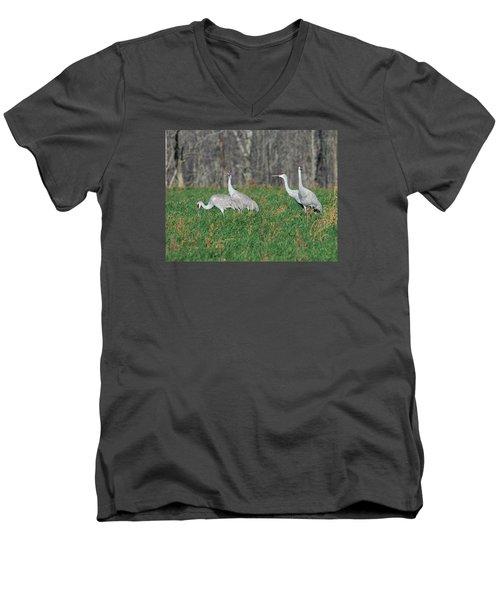 Sandhill Cranes Men's V-Neck T-Shirt