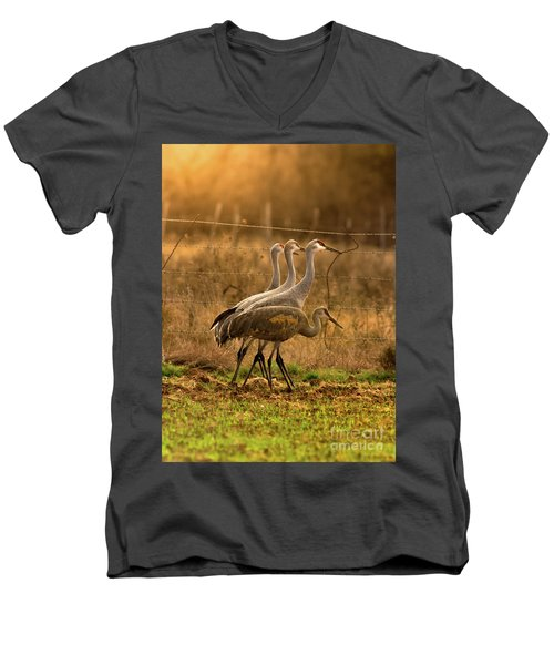 Men's V-Neck T-Shirt featuring the photograph Sandhill Cranes Texas Fence-line by Robert Frederick