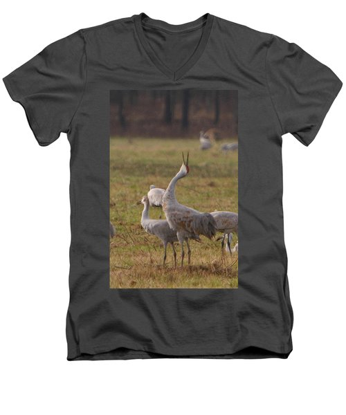 Men's V-Neck T-Shirt featuring the photograph Sandhill Delight by Shari Jardina