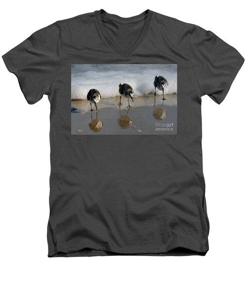 Sandpipers Feeding Men's V-Neck T-Shirt by Dan Friend