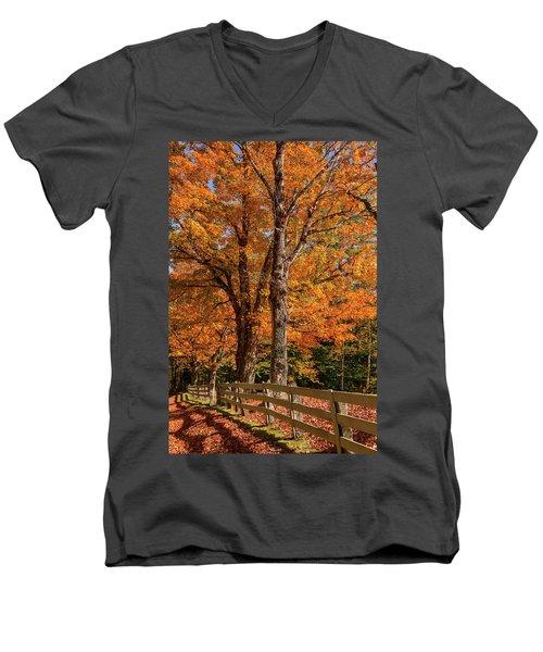 Sandwich Autumn Men's V-Neck T-Shirt
