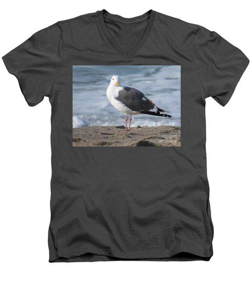 Santa Monica Seagull Men's V-Neck T-Shirt by Margaret Brooks