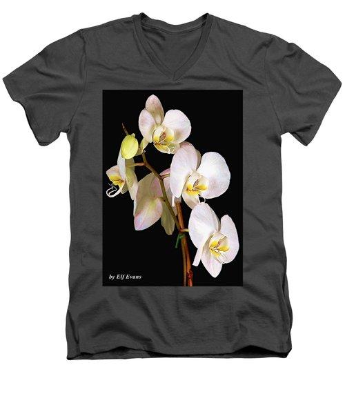 Men's V-Neck T-Shirt featuring the photograph Sara Ella by Elf Evans