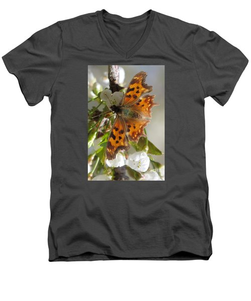 Satyr Comma Men's V-Neck T-Shirt