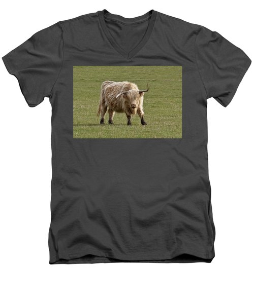 Sauvie Island Cow Men's V-Neck T-Shirt