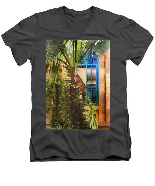 Savannah Window Men's V-Neck T-Shirt