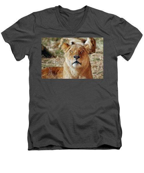 Savoring The Sun Men's V-Neck T-Shirt