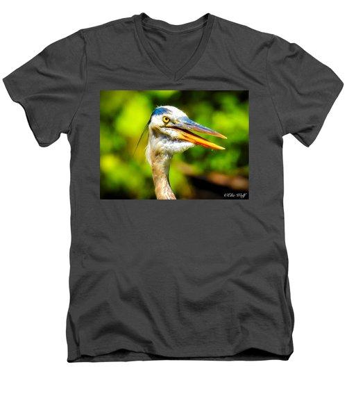 Say What? Men's V-Neck T-Shirt
