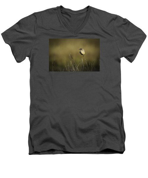 Say's Flycatcher Men's V-Neck T-Shirt