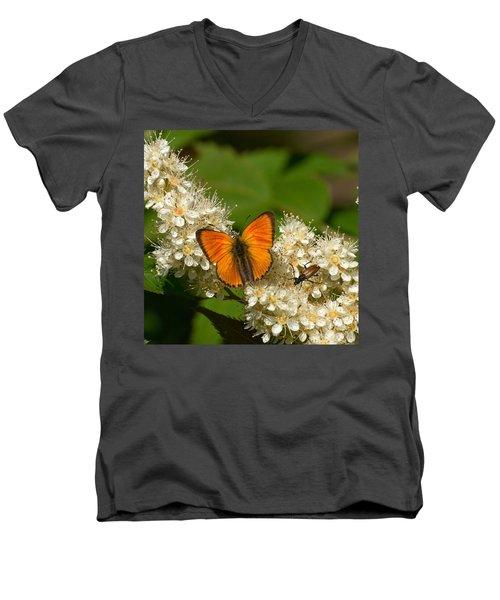 Men's V-Neck T-Shirt featuring the photograph Scarce Copper 2 by Jouko Lehto